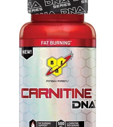 BSN Carnitine