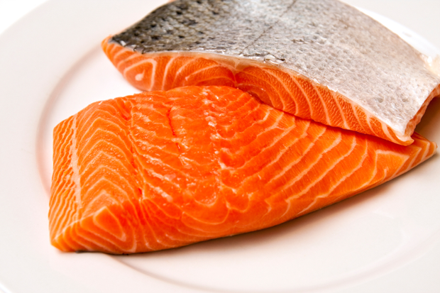 high protein foods samon