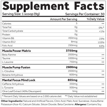 Shadow X Pre Workout Supplement Facts
