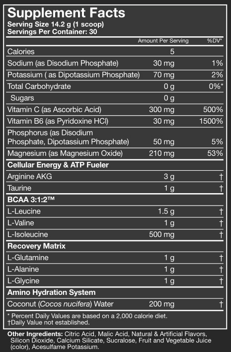 Amino 1 Sport Supplement Facts
