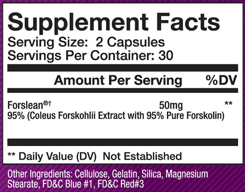Olympus Labs Forslean Supplement Facts
