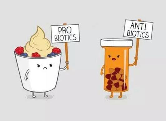 probiotics banner
