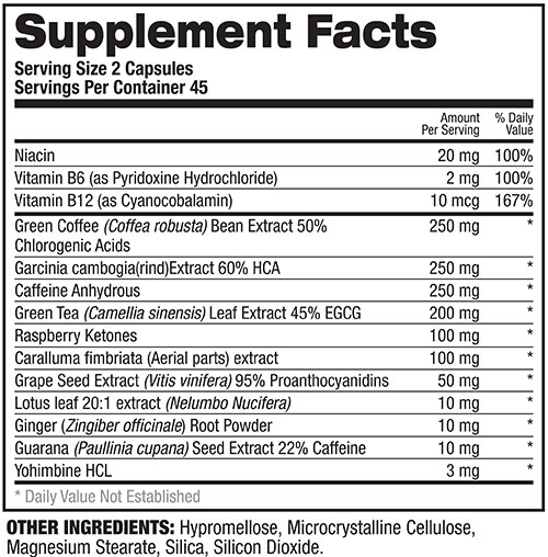 Ab Igniter Supplement Facts