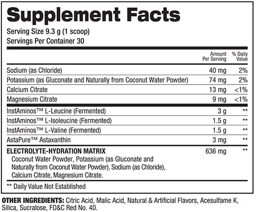 BCAA Re Igniter Supplement Facts