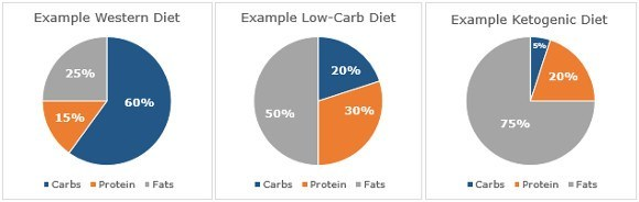 low carb diets diagram