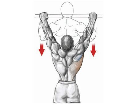 back workout pull-up