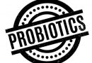 Best Probiotic : What To Look For