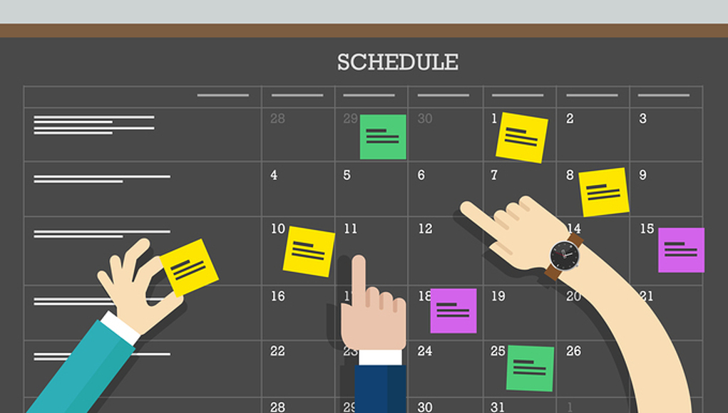 brain functions focus Circadian Scheduling