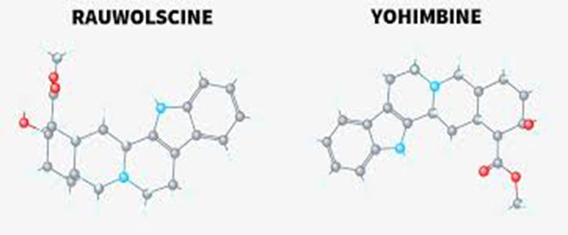 Rauwolscine Extract
