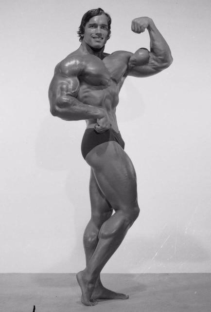 Mesomorph Arnold