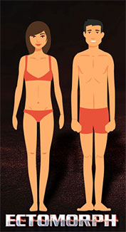 ectomorph mesomorph body types