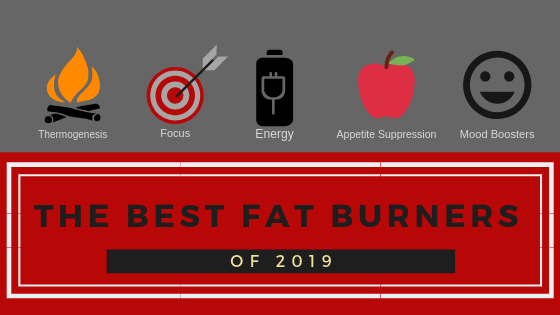 Best Fat Burners For Your 2019 Resolutions Supplement