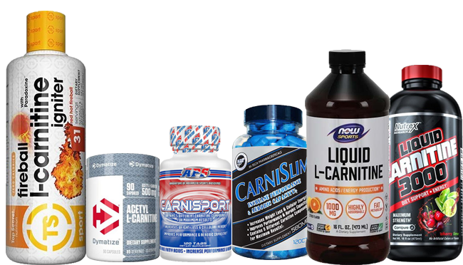 Lcarnitine best fat burner