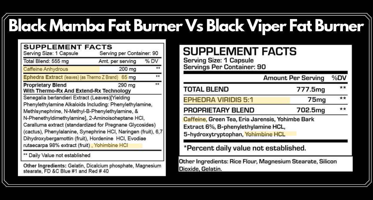 black-mamba-fat-burner-vs-black-viper-fat-burner-