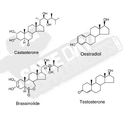 plant-hormone-vs-mammal-hormone laxo
