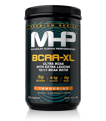 gift guide bcaa-xl
