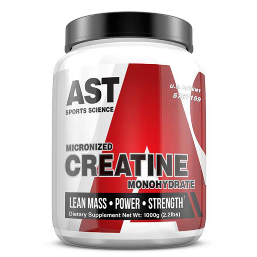 Micronized Creatine By AST Sports Science, 1000 Grams