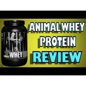 Animal Whey Protein By Universal Nutrition