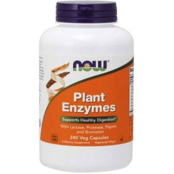 NOW Plant Enzymes - 240 Veg Capsules